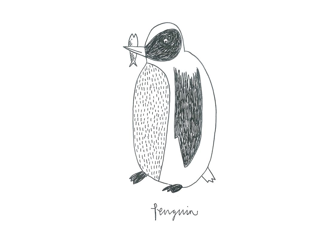 illustration of a penguin