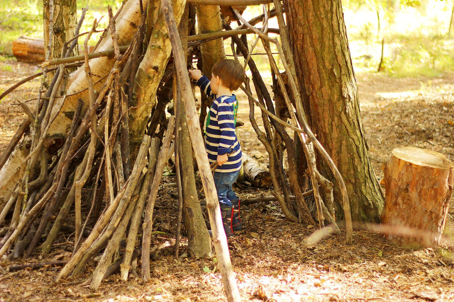 How To Build The Best Forest Den Ever Joules