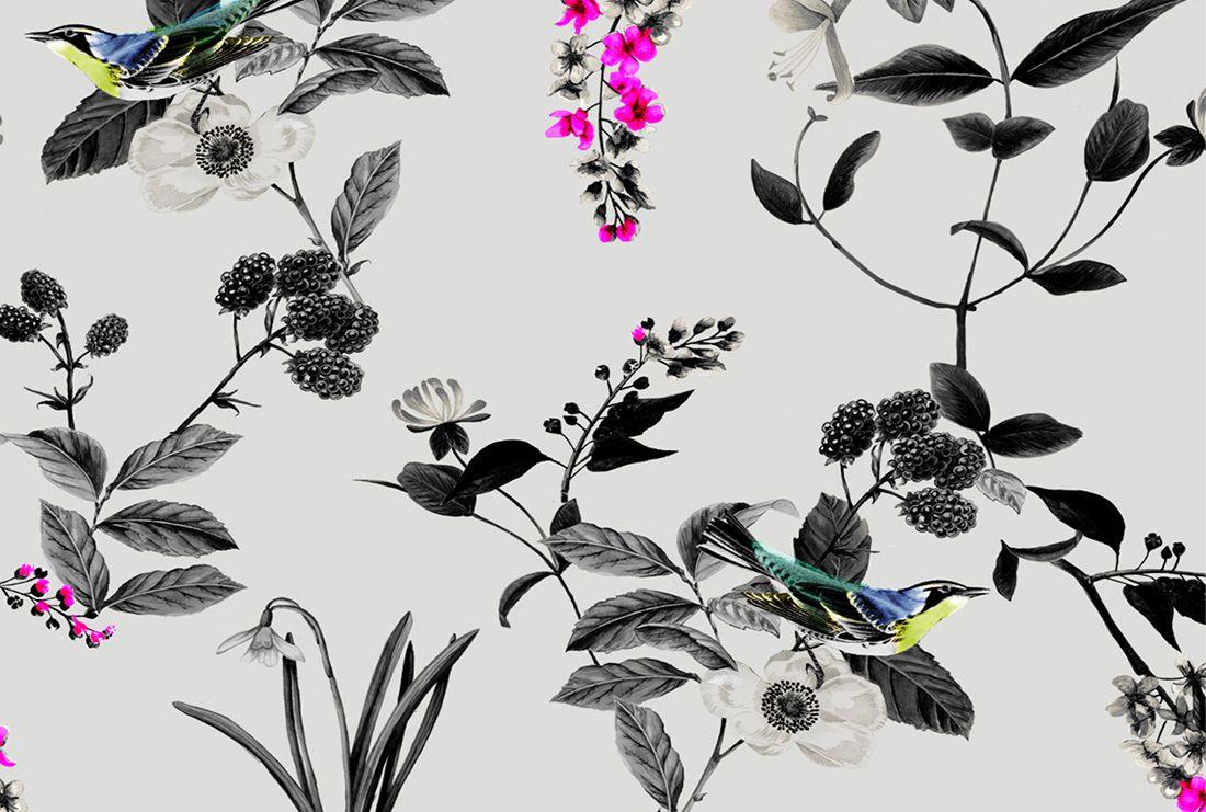 The Birdberry Print Hero Image