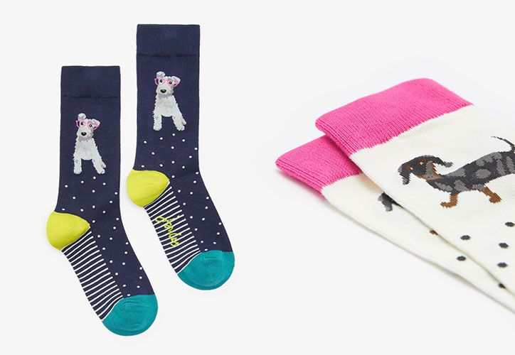 joules dog festive socks