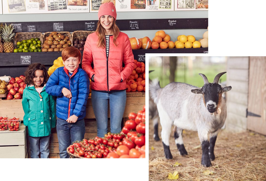 joules spring summer shoot in farm shop with farm yard animals