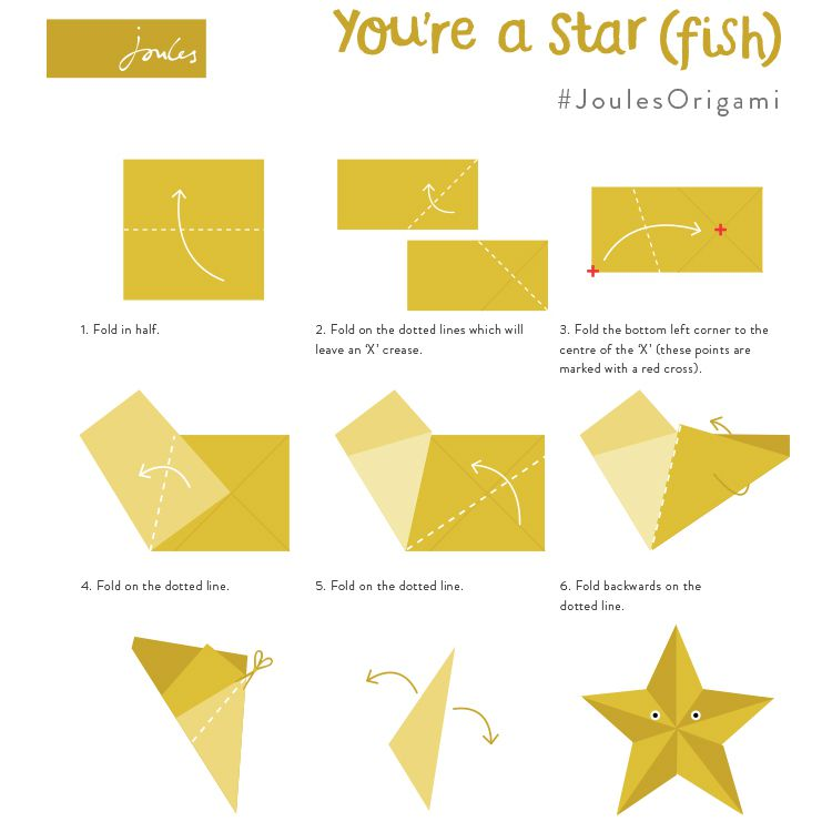 Starfish Stars And Fish On Pinterest Manual Guide