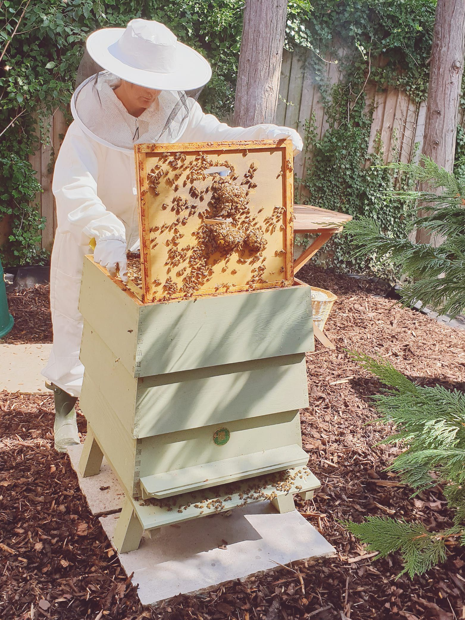 An Introduction To Beekeeping - The Joules Journal - bees ...