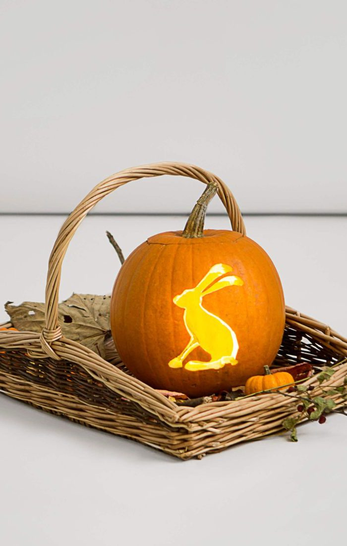 hare_pumpkin