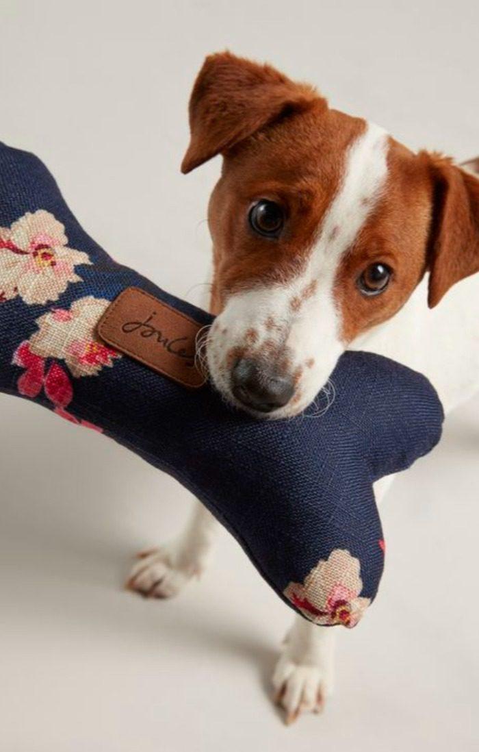 Floral pet bone