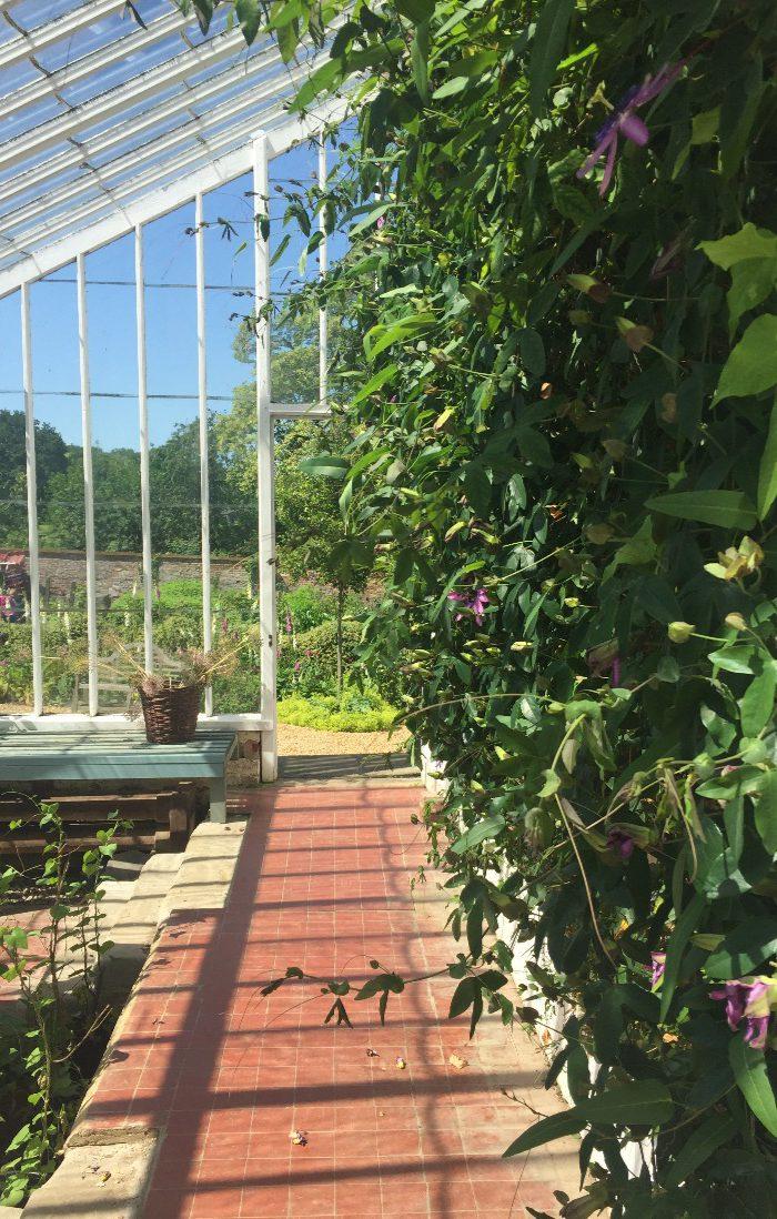 Kelmarsh greenhouse